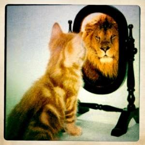 selbstbewusstsein (1)